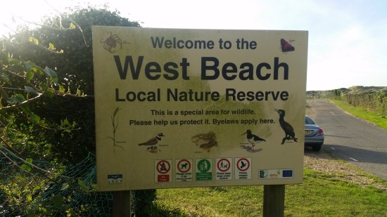 West Beach Nature Reserve and SSSI