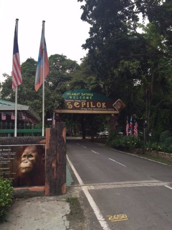 Sepilok, Malesia: ingresso