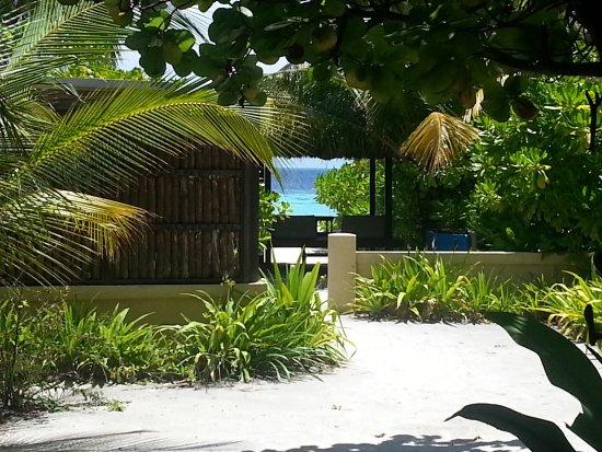 Banyan Tree Vabbinfaru: Ocean view from backside of Ocean-view- villa