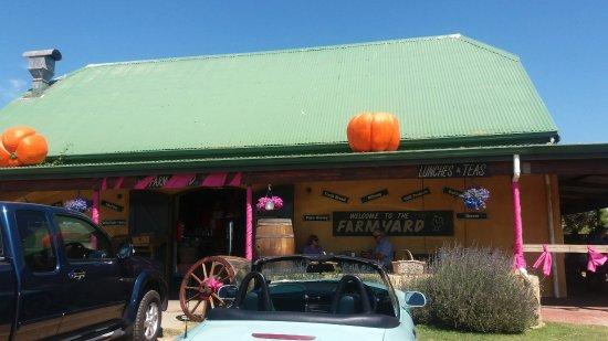 Melkbosstrand, جنوب أفريقيا: Farmyard Farmstall