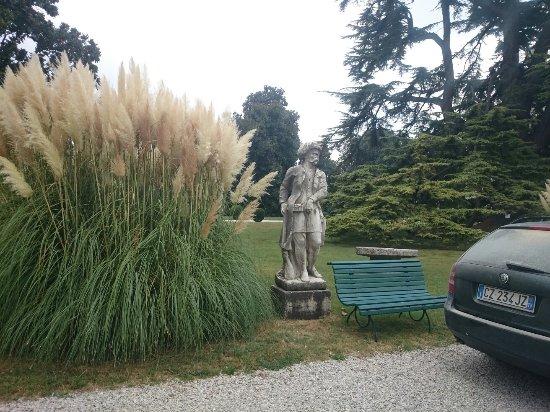 Roncade, Italia: DSC_0230_1_large.jpg