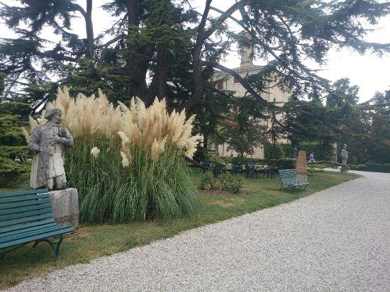 Roncade, Italia: DSC_0231_1_large.jpg