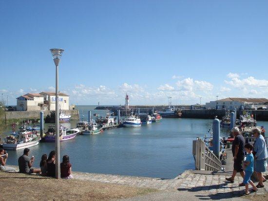 Saint-Pierre-d'Oleron, Francia: Port La Cotinière