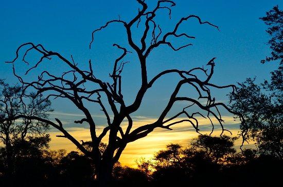 Katima Mulilo, ناميبيا: Entorno