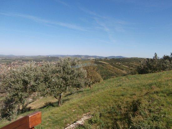 Tarcal, Ungheria: 34..