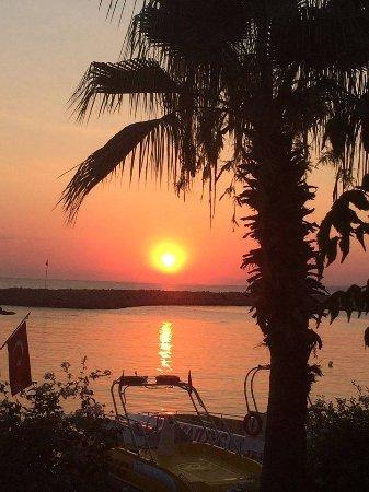 Apollonik: Sunset