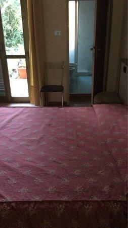 Hotel Adler: photo2.jpg