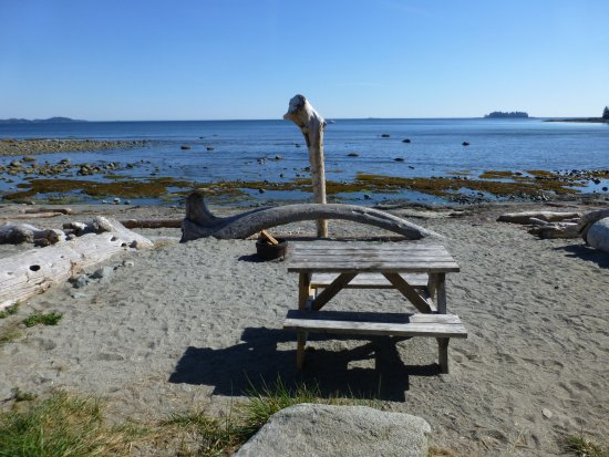 Mussel Beach Campground 사진