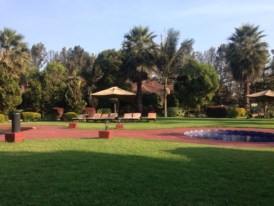 Karatu, Tanzania: Pool area