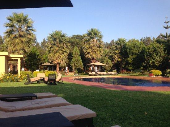 Karatu, Tanzania: Sunbeds around pool