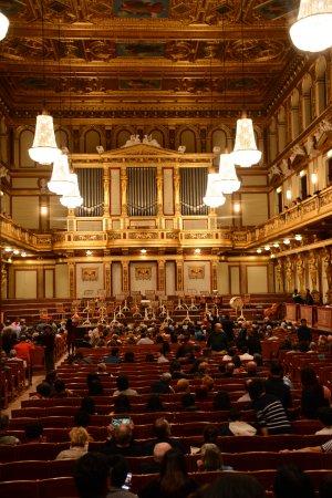 The Vienna Philharmonic: platéia
