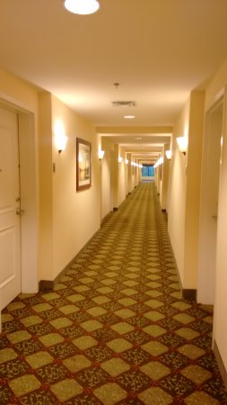 Leland, NC: Picture down the hallway to our room
