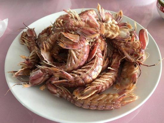 Qinhuangdao, Cina: Japanese mantis shrimps