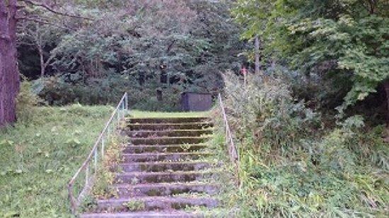 Sobetsu-cho, Japonya: 廃線の旧ホームへ上る階段