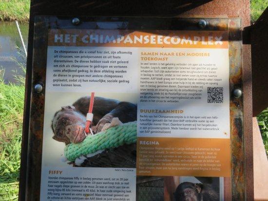 Almere, Países Bajos: chimpanseecomplex