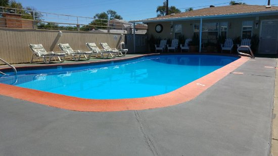 Monterey Non-Smokers Motel: Pool, loungers and owners place at the end