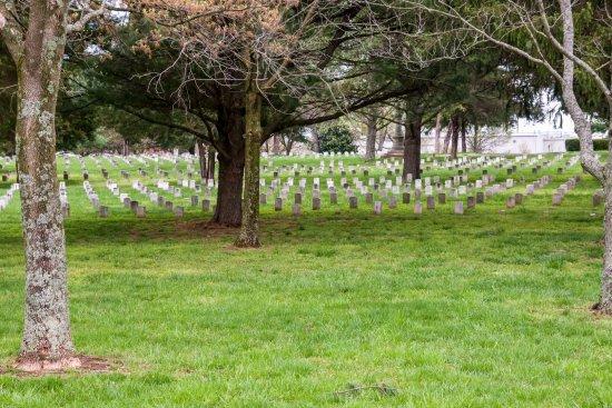 Murfreesboro, Τενεσί: Too Many Fallen