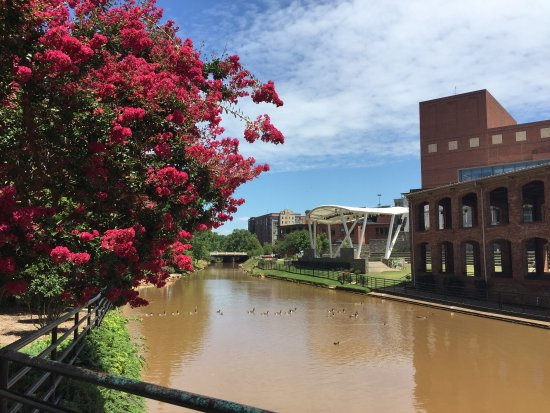 Hampton Inn & Suites Greenville - Downtown - Riverplace: photo4.jpg