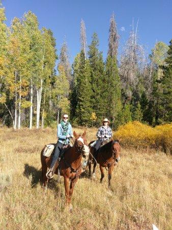 Clark, CO: Trail Riding...