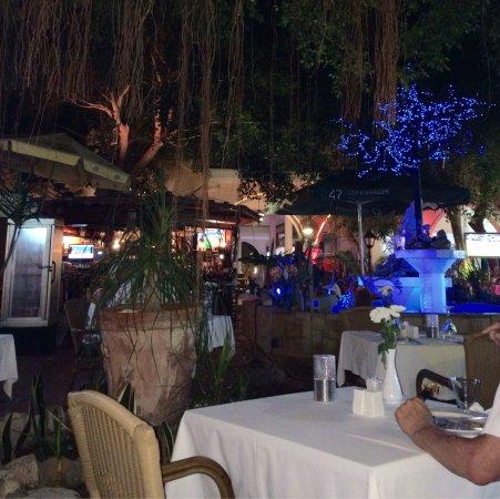 Distrito de Pafos, Chipre: Sfeervol. Lekker eten. Goede wijnen.
