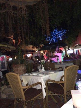 Район Пафос, Кипр: Sfeervol. Lekker eten. Goede wijnen.