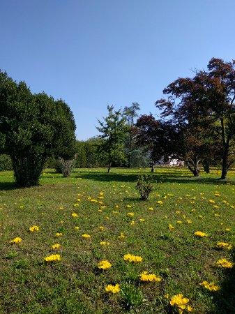Giardino di Villa Emo: IMG_20160924_123911_large.jpg