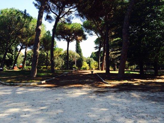 Parco Nemorense (Virlgiliano)