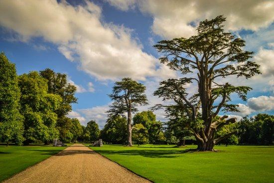 wilton house park