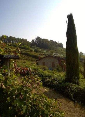 Scanzorosciate, Italia: la brugherata