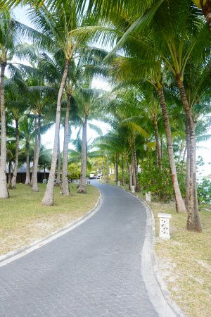 The St. Regis Bora Bora Resort: The path to the villas further out
