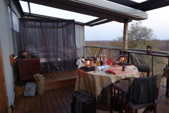 Timbavati Private Nature Reserve, Νότια Αφρική: Giraffes nest - what an experience!