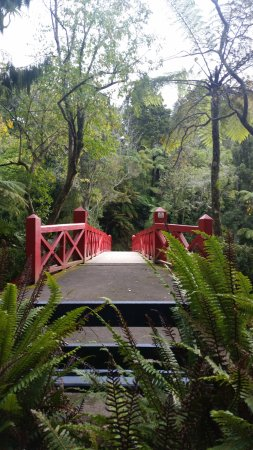 New Plymouth, Nueva Zelanda: lovely bridges