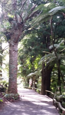 New Plymouth, نيوزيلندا: lovely walkways