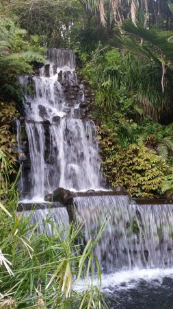 New Plymouth, Selandia Baru: waterfall lights up at night during summer
