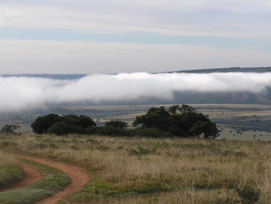 Amakhala Game Reserve照片