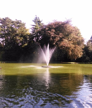Ravenshead, UK: Fountain in cooling pond