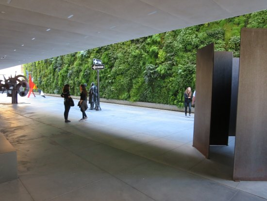 Marvelous San Francisco Museum Of Modern Art (SFMOMA): Living Wall