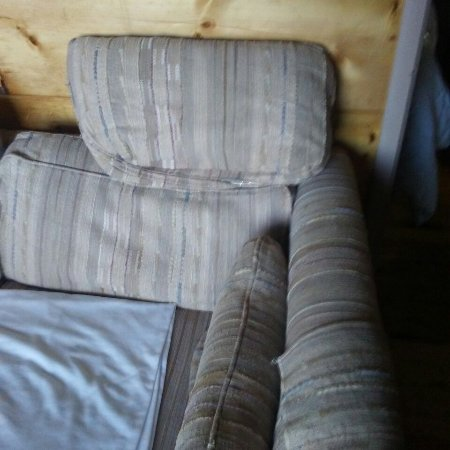 """Elsie's Lakeview Cabins: Shoreline with concrete rubble Worn sofa in #6 """"Nightstand""""  in #6"""