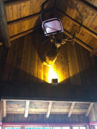 Val David, Canada: photo5.jpg