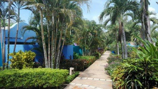 Esterillos Este, كوستاريكا: IMG_20160925_091320_large.jpg
