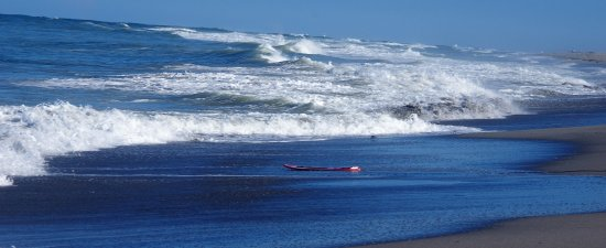 Hobe Sound, FL: SURF AND SURF BOARD