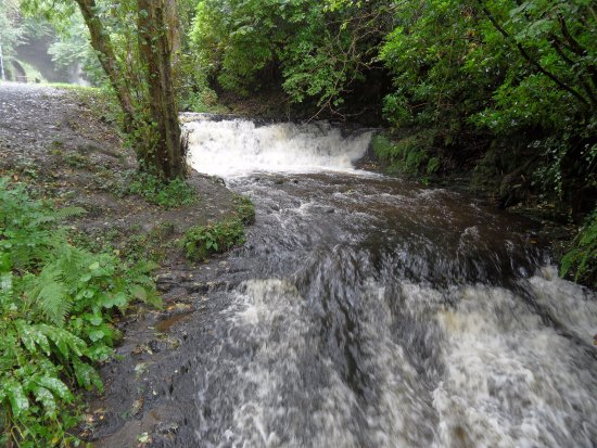 Leitrim, Irland: Waterfall