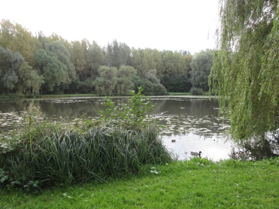 Bolton, UK: The lake