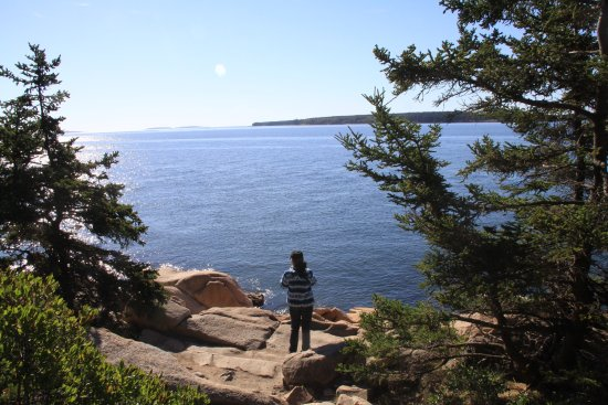 Bass Harbor, ME: View from the trails