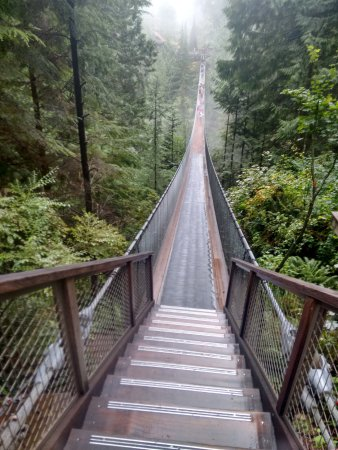 Kuzey Vancouver, Kanada: the bridge