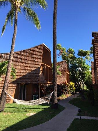 Kaunakakai, Havaí: photo3.jpg