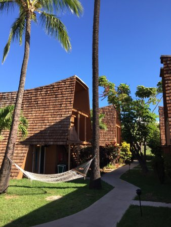 Hotel Molokai: photo3.jpg