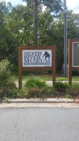 Silver River State Park: 20160905_113946_HDR_large.jpg