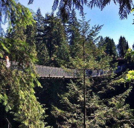 Kuzey Vancouver, Kanada: photo2.jpg