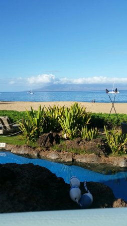 Sheraton Maui Resort & Spa: IMG-20160924-WA0000_large.jpg